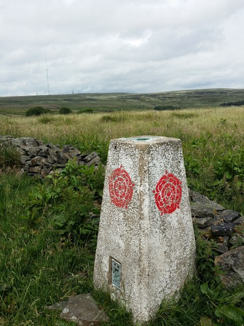 Trig Pillar North of Matchmoor Lane