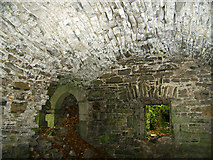 N9473 : Castles of Leinster: Carrickdexter, Meath (3) by Garry Dickinson