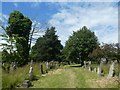 SX9393 : Neglected gravestones, Exeter Higher Cemetery by David Smith