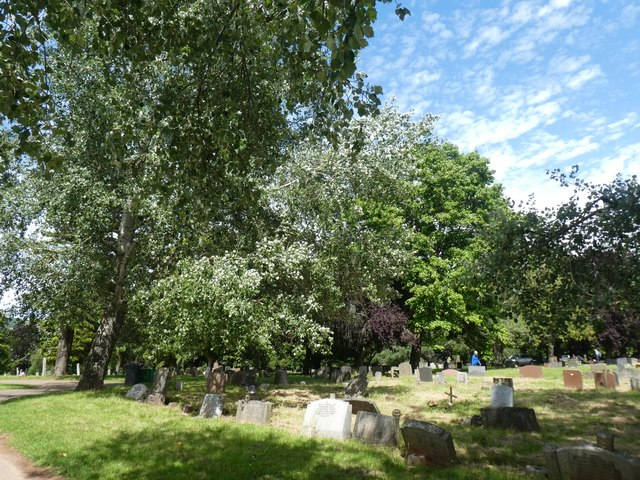 Trees and shrubs, Exeter Higher Cemetery