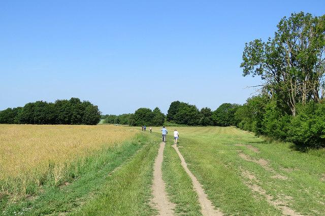 Walking to Haslingfield