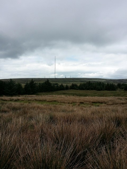 View North from the marked position of the cairn