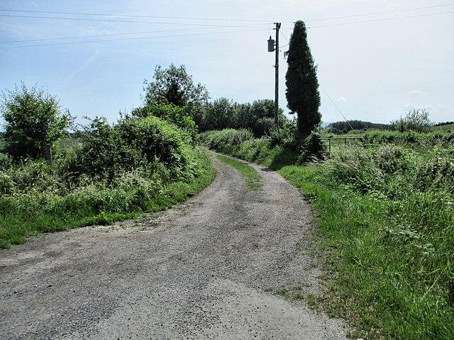 Country Laneway