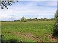 SJ9319 : Flood plain and Radford Meadows near Stafford by Roger  Kidd