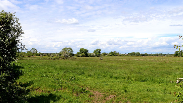 Meadows and flood plain south-east of Stafford