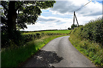 H5366 : A hidden bend along Dervaghroy Road by Kenneth  Allen
