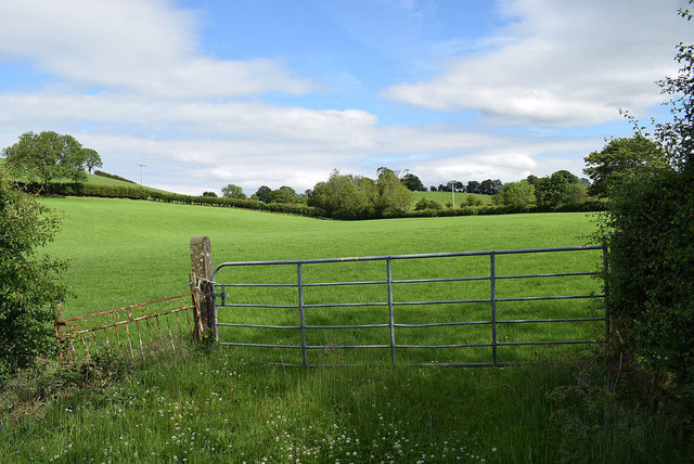 Gate and countryside, Laragh
