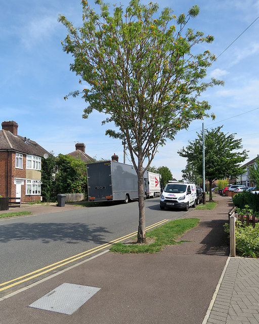 Barnwell: removals on Whitehill Road