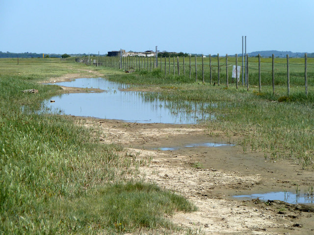 Saline puddles behind shoreline