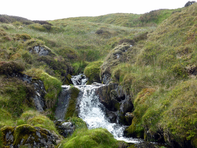 Maesnant [stream] flowing down from Plynlimon