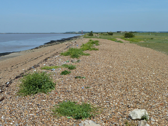Old sea wall remains, Eastcourt Marshes