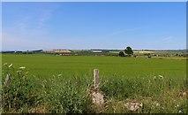 NO3002 : View across farmland by Bill Kasman