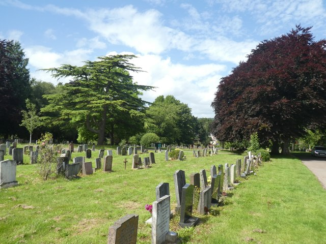 Cedar and other trees in Exeter Higher Cemetery