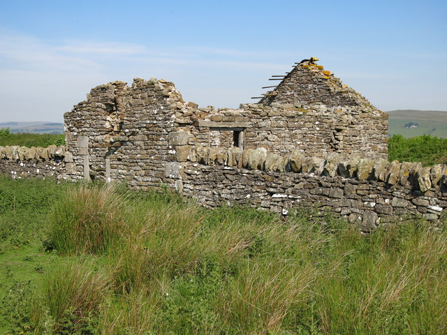 Ruined cottage east of Shield Ash (2)