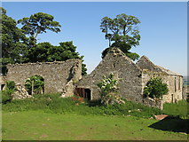 NY9837 : Shield Ash - outbuildings by Mike Quinn