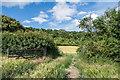 TQ2252 : Across Buckland Lane by Ian Capper