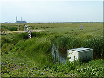 TQ6974 : Shorne Marshes by Robin Webster