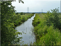 TQ6973 : Ditch, Shorne Marshes by Robin Webster