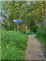 SD7807 : Radcliffe Banana Path by David Dixon