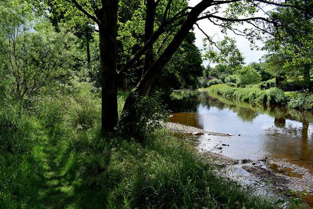 Camowen riverbank at Mullaghmore