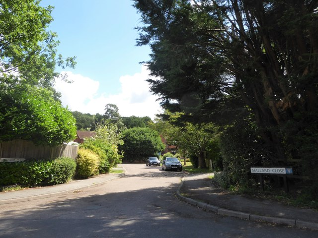 Looking from Crichmere Lane into Mallard Close