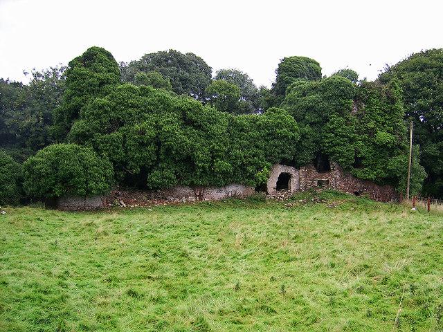 Castles of Leinster: Clongill, Meath (1)