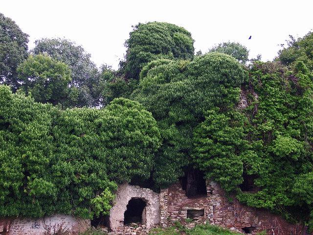 Castles of Leinster: Clongill, Meath (2)