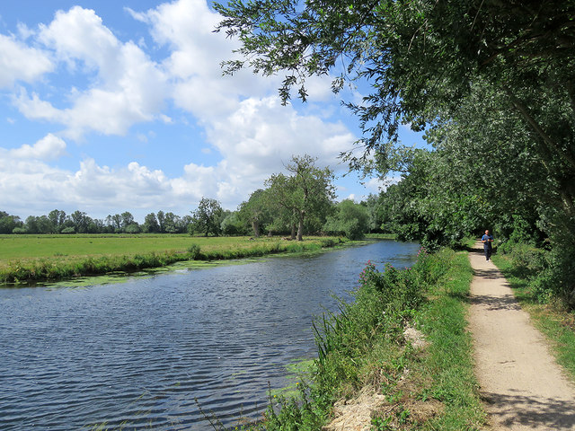 Meadow, river, path and jogger