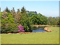 SH5867 : Small Lake, Tan-y-foel by Chris Andrews