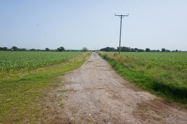 Farm track from East Farm
