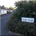 SZ0696 : Bear Cross: Jenni Close by Chris Downer