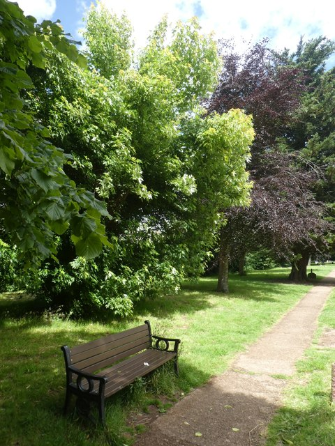 Bench and trees, Exeter Higher Cemetery