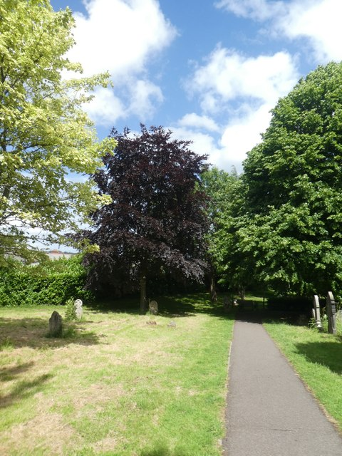 Footpath and trees, Exeter Higher Cemetery