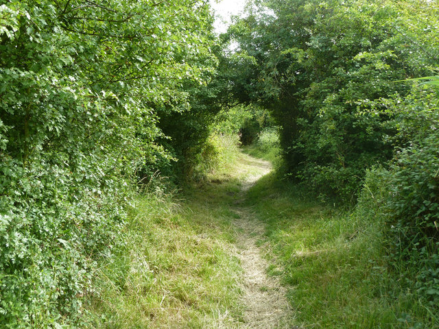 Footpath across Great Clane Lane Marshes