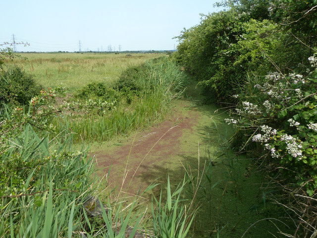 Ditch, Great Clane Lane Marshes