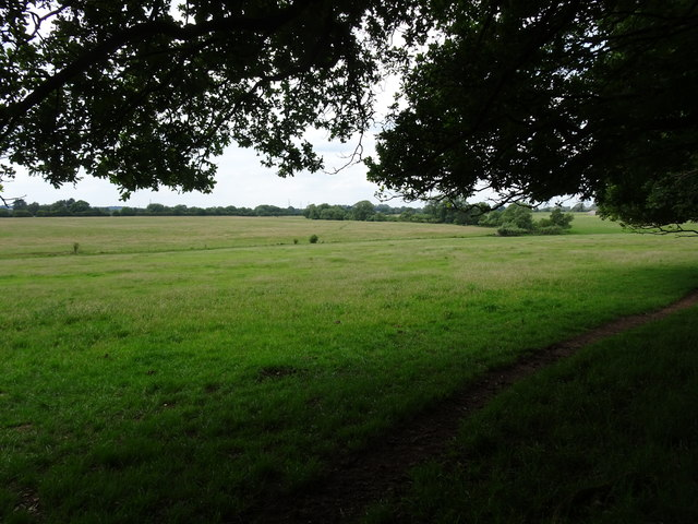 Bratch Field