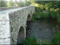 SO3958 : Pembridge Bridge and the River Arrow by Fabian Musto