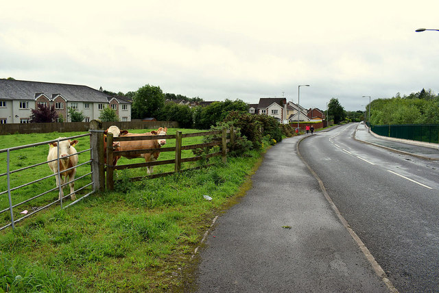 St Julian's Road, Mullaghmore