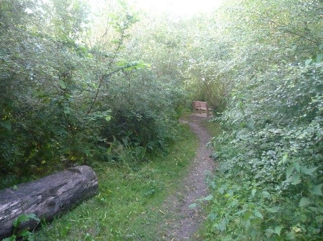 Path to Pembridge Village Green Conservation Area
