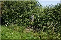 SE7843 : Fingerpost on Gale Carr Lane, Bielby by Ian S