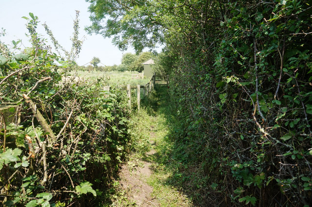 Path leading to Mill Lane, Bielby