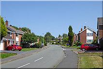 SO9095 : Sandhurst Drive in Penn, Wolverhampton by Roger  Kidd