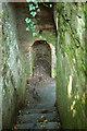 SX8963 : Steps in wall, Cockington Lower Lodge by Derek Harper