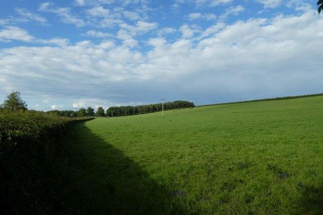 Farmland at King's Hill