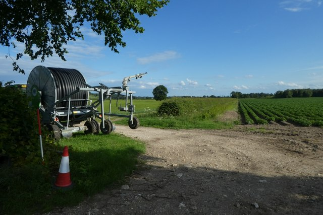 Field irrigation beside Sand Lane