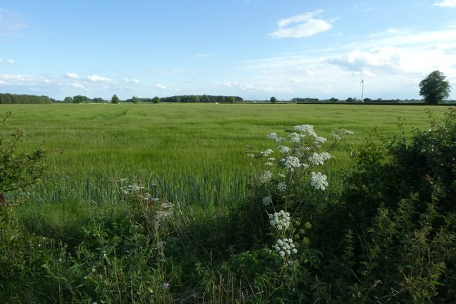 Fields off Sand Lane