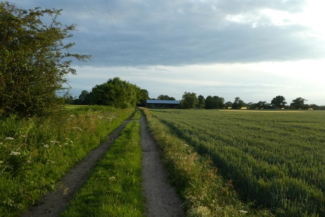 Bridleway near Langwith Lodge