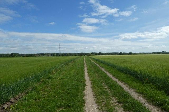 Bridleway towards Sand Hutton