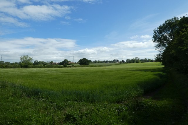 Farmland at Claxton Ings