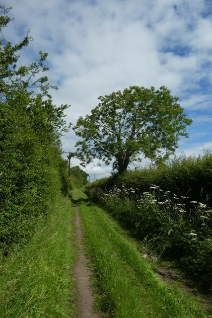 Bridleway to Whinny Lane